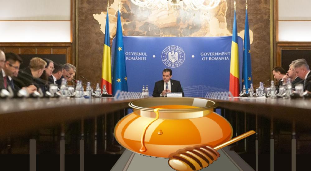 LAPTE ȘI MIERE – Noul program al Guvernului Orban aduce raiul în România